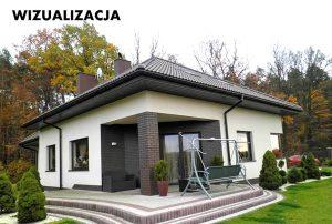 na zdjęciu widok od strony ogrodu na dom w okolicach Łodzi do sprzedaży